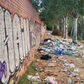Ciudadanos Ciudad Lineal solicita de manera urgente tareas de mantenimiento y limpieza en el Parque Salvador de Madariaga