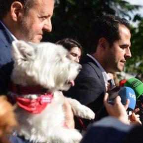 """Aguado: """"Cuando sea presidente, los pacientes ingresados en hospitales públicos madrileños podrán recibir la visita de sus mascotas"""""""